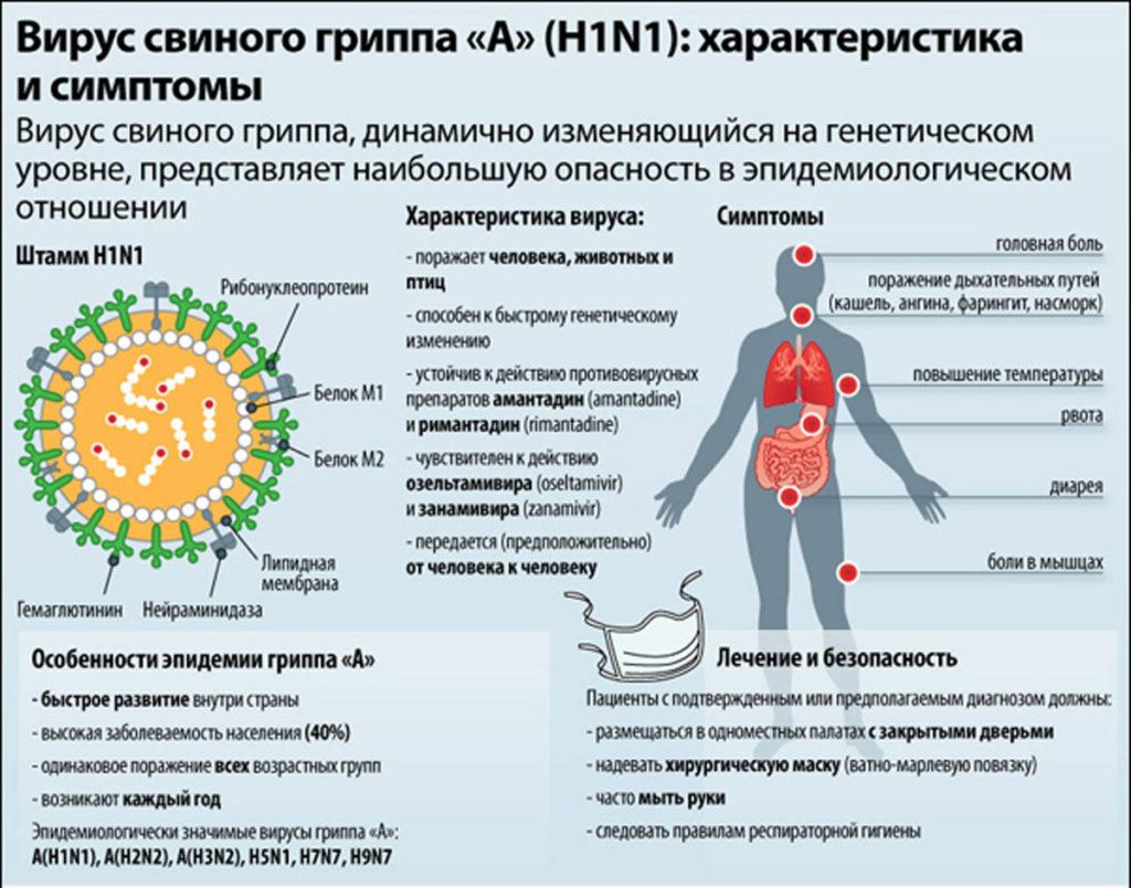 Симптомы свиного гриппа у людей