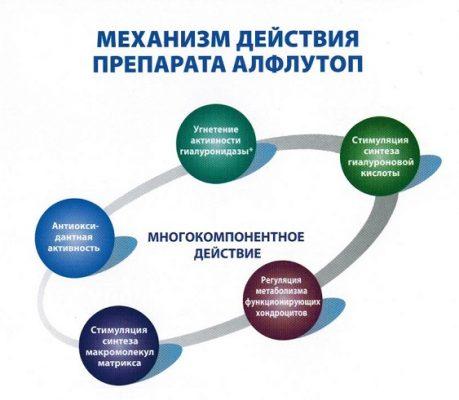 Механизм действия Алфлутопа