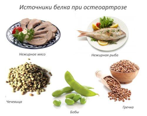Источники белка при остеоартрозе