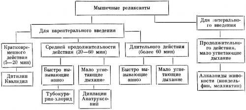 Классификация мышечных релаксантов