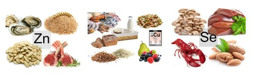 Медь, селен и цинк в продуктах