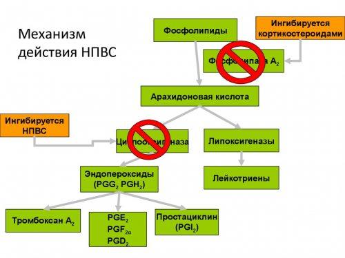 Механизм действия НПВС при артрите