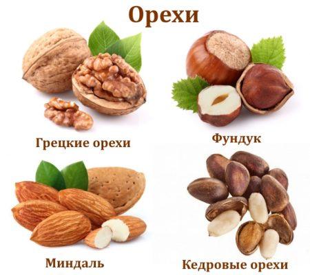 Разрешенные орехи при подагре
