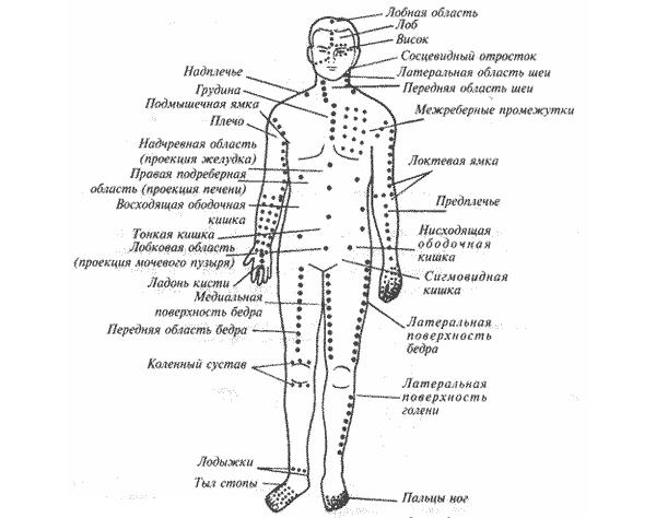 Основные точки для массажа шиацу