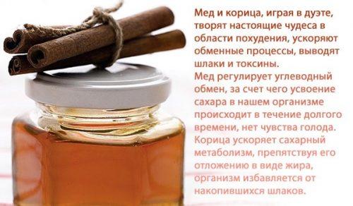 Польза от сочетания мёда и корицы