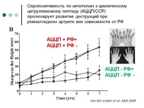 Серопозитивность по антителам к АЦЦП
