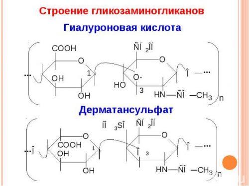 Строение гликозаминогликанов