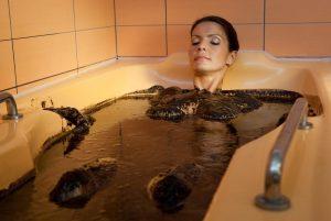 Ванны с озокеритом