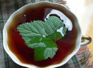 Чай с листьями смородины