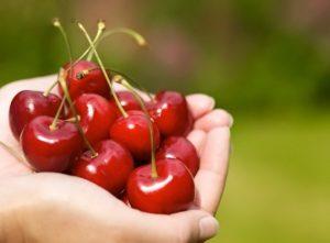 Употребление вишни и черешни при подагре