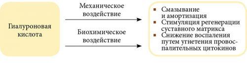 Воздействие гиалуроновой кислоты на воспаление