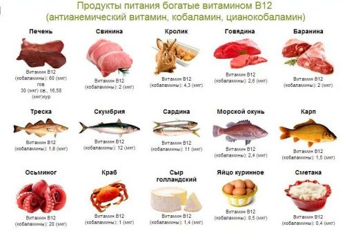 Источники витамина B12