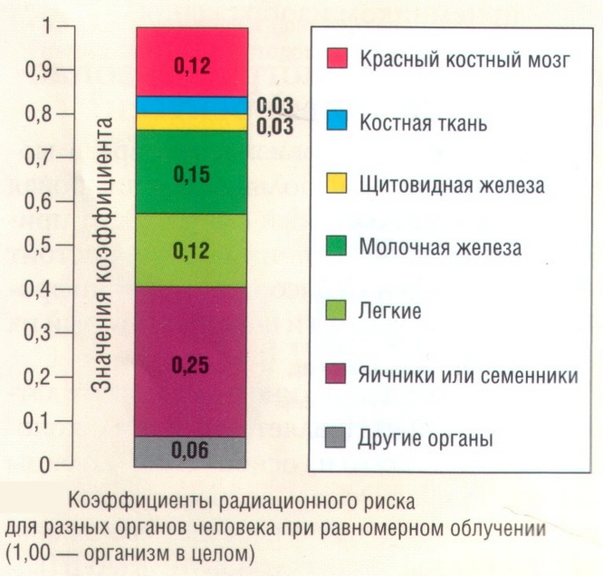 Коэффициенты радиационного риска при рентген излучении