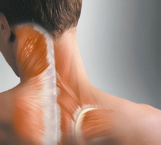 Мышечные спазмы в области шеи