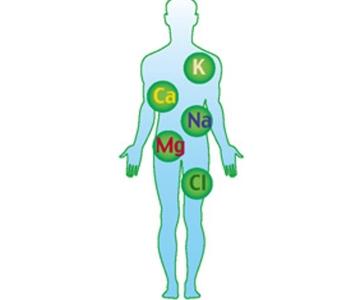 Насыщение организма витаминами и минералами