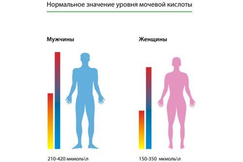 Нормальные показатели уровня мочевой кислоты в крови