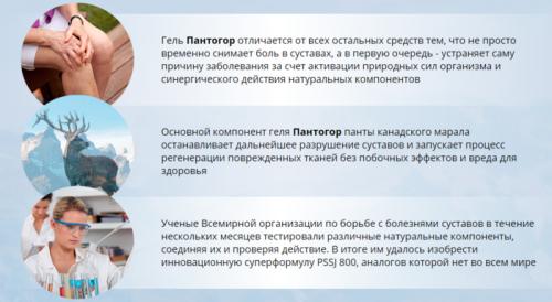 Особенности геля Пантогор