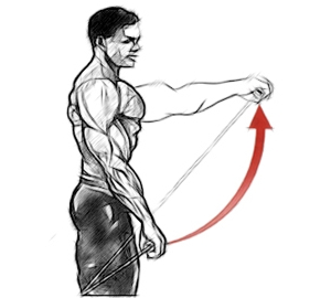 Подъем прямой руки на уровень плеча