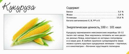 Полезный состав кукурузы