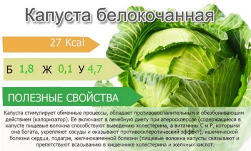 Полезный состав белокочанной капусты
