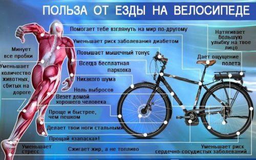 Польза от езды на велосипеде