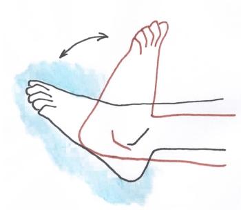 Потягивание стопы на себя и вращение