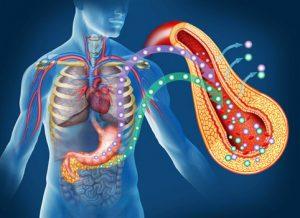 Повышение инсулина в крови