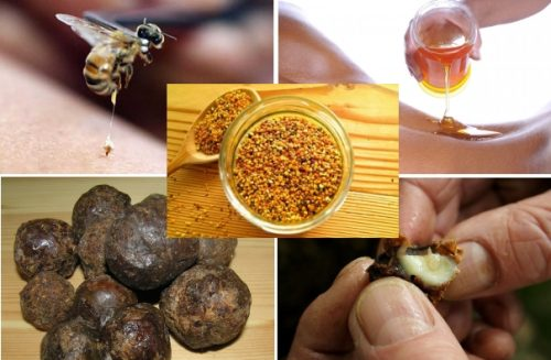 Продукты пчеловодства при радикулите