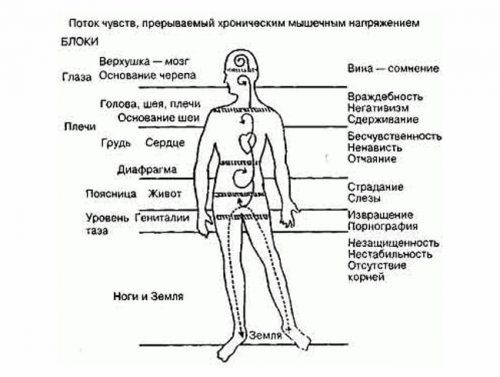 Психологическое напряжение и части тела