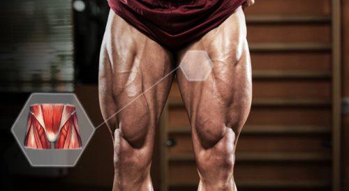 Возникновение растяжения паховых мышц