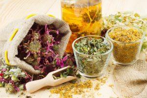 Травяные настои и сборы при болезни Бехтерева