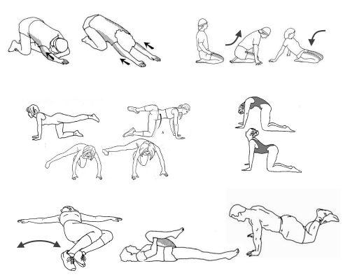 Упражнения Дикуля для спины