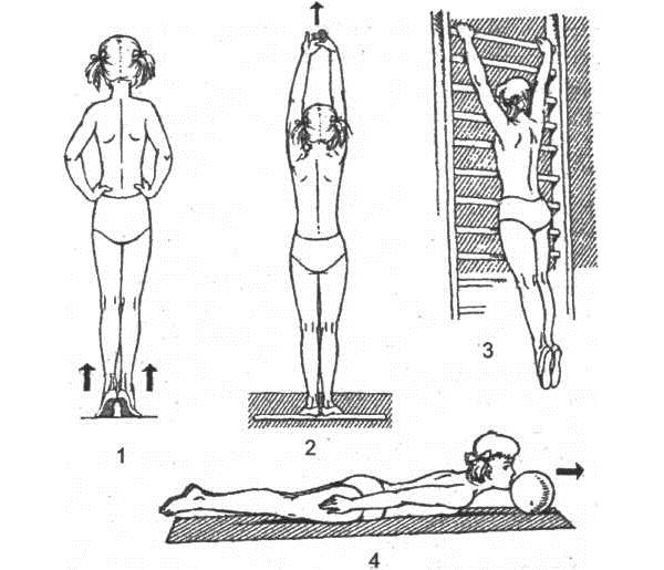 Упражнения для активного вытяжения позвоночника