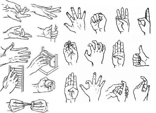 Упражнения для пальцев и кисти