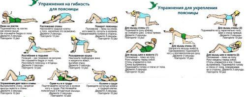 Упражнения на растяжку и укрепление спины