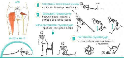 Упражнения при спазме грушевидной мышцы