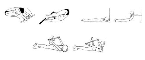 Упражнения с палкой для осанки сидя и лежа