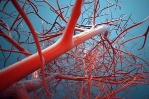 Усиление кровообращения при помощи массажа