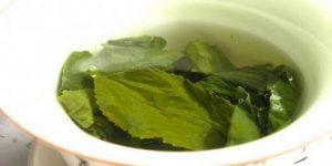 Ванночки с березовыми листьями